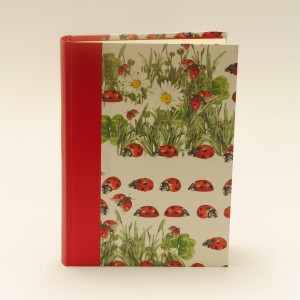 Piggelmee_journalladybirds
