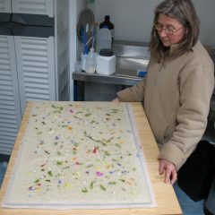 Paper making with flowers
